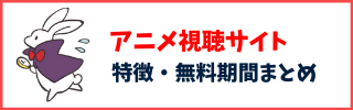 アニメ視聴サイト
